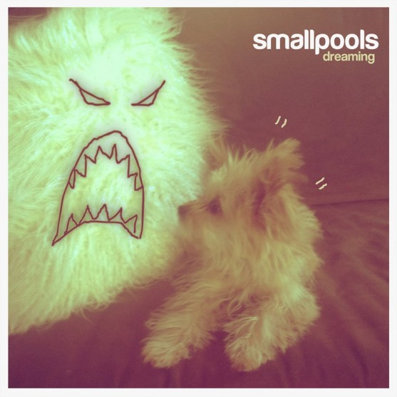 INTRODUCING: Smallpools